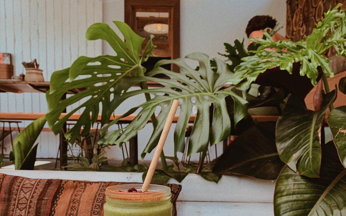 top-10-trendy-kamerplanten-2020